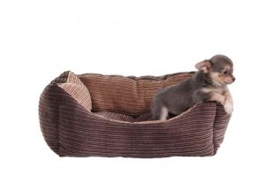 orvis dog crate furniture. Simple Dog Best Chew Resistant Dog Beds For Dogs Reviews Inside Orvis Crate Furniture