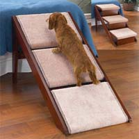 How to Choose the Right Dog Stairs or Dog Ramp