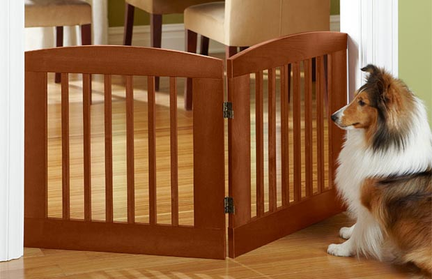 How To Choose Dog Gates And Playpens For Dogs Top Dog Tips