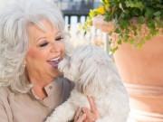 Hugs Pet Products Partners with Paula Deen