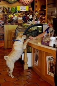 Three Dog Bakery Unleashes 5th Annual Feed a Dog Food Drive