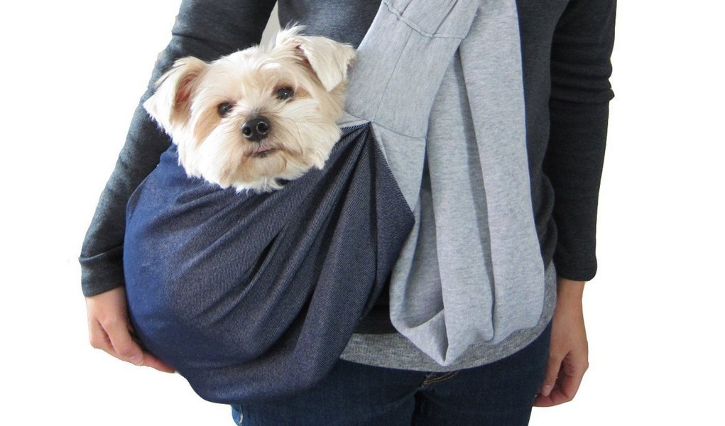 Dog Carrier Backpack or Carrier Sling? It's a Matter of Convenience