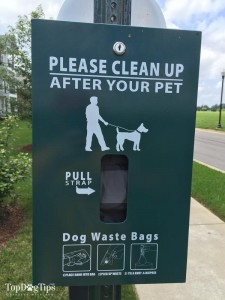 Doggy Poop Bags and How to Live With Them