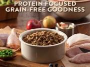 Ten Best Grain Free Dog Food Brands