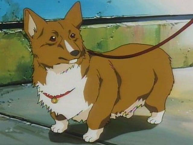 Anime Dog