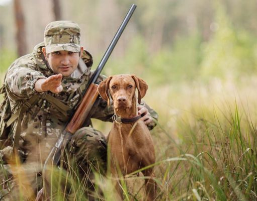 Most Essential Best Gun Dog Supplies for Game Hunters to Assist You Both on Hunts