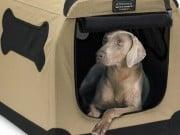 Petnation Indoor Outdoor Pet Home