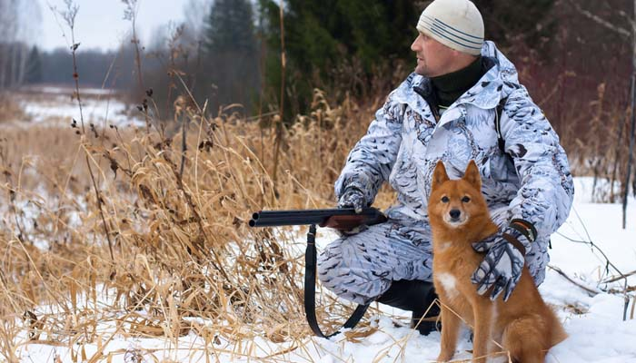 Safety When Hunting with Dogs