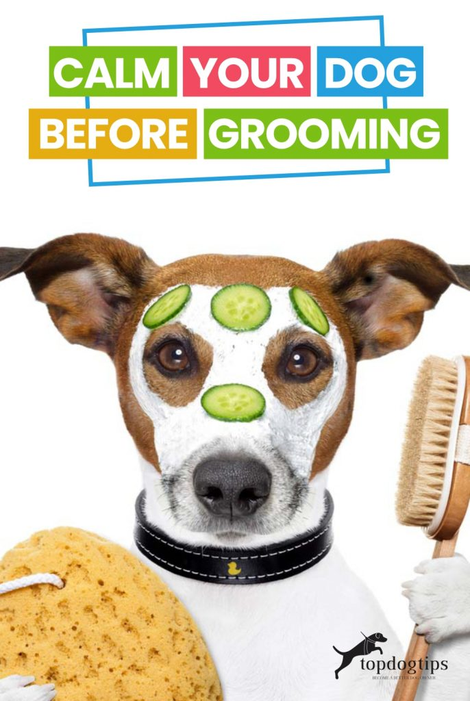 Calm Your Dog Before Grooming