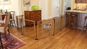 Best Dog Gates Indoor for Pet Safety