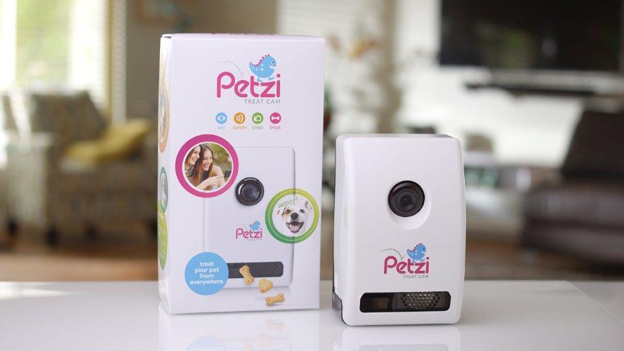 Best Dog Cameras for Pet Monitoring