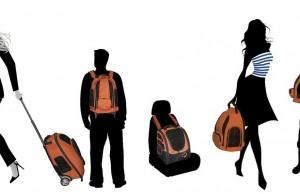 IGO Pet Travel Backpack