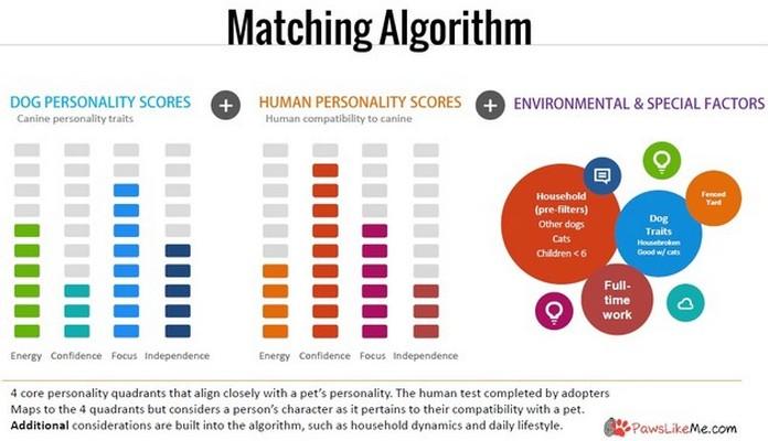 algoritme Dating Sites Dating Sites brukernavn