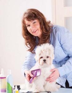 pro dog groomer brushing a dog