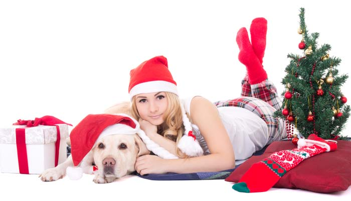 10+ Best Christmas Gifts for Dog Parents – Top Dog Tips