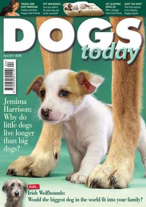 Best Dog Magazines 2016 - Dogs Today Magazine