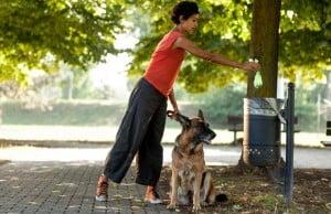 Best Dog Poop Bags Review