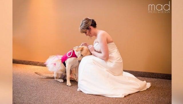 Bride's Wedding Photos Go Viral Thanks to Her Service Dog