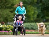 What is the Best Hands Free Dog Leash Reviews