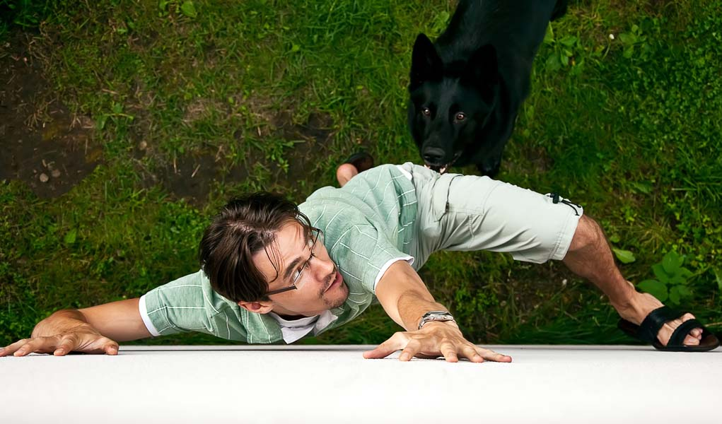 8 Tips on How to Get Over a Fear of Dogs (as per Animal ...