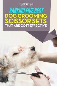 Top Best Dog Grooming Scissors Sets