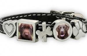 Zelda Song Custom Pet Themed Photojewelry Review