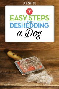 Deshedding a Dog Checklist