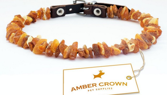 Repel Fleas and Ticks Naturally With Amber Crown Collars
