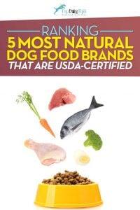Top Best Natural Dog Food