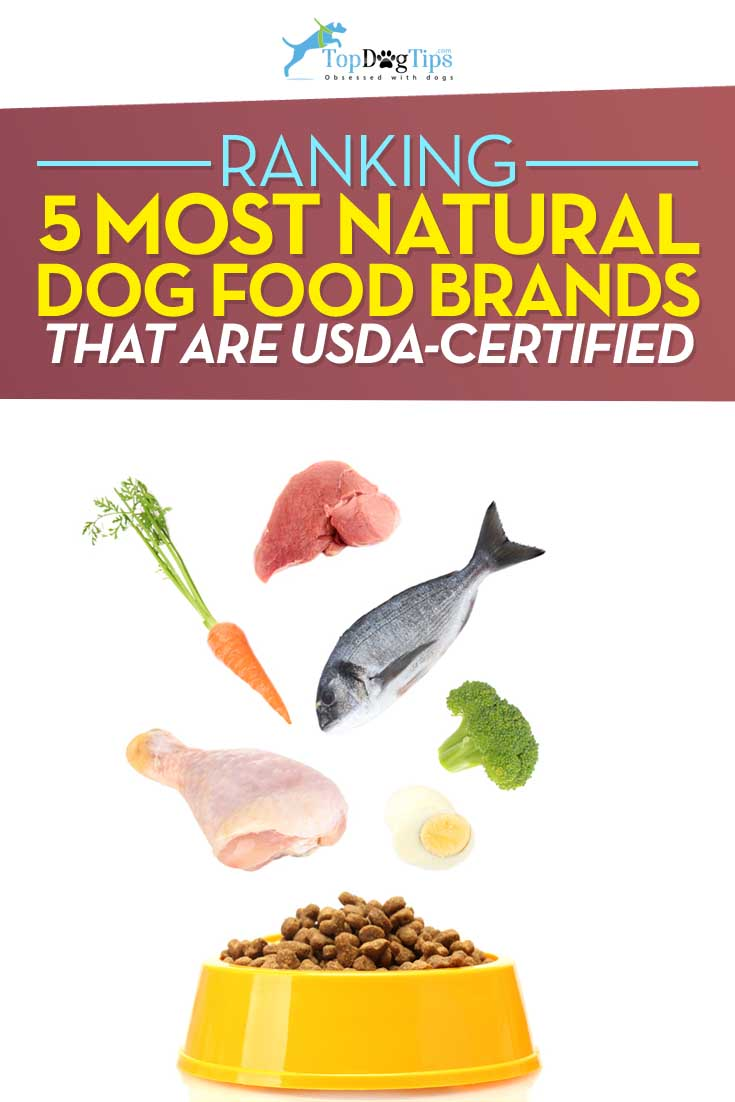 Best Natural Dog Food >> Top 5 Best Natural Dog Food That S Usda Certified Healthy