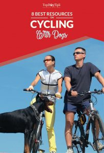 Best Blogs About Biking with Dogs