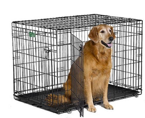 Best Crates for Dogs - Finding Cheap Dog Kennels for Sale