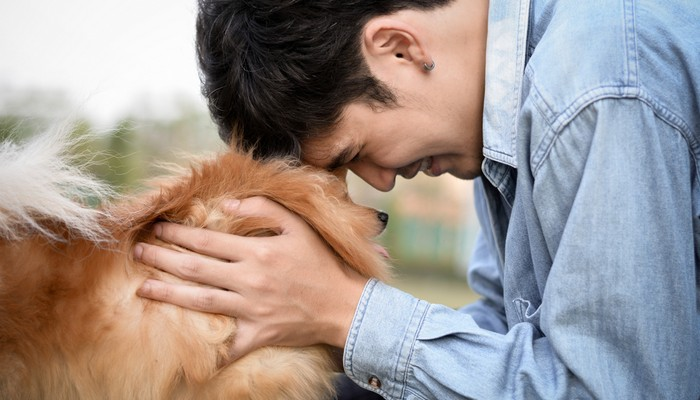 Human and Dogs Heartbeats Align
