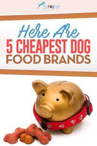 Top Best Inexpensive Dog Foods