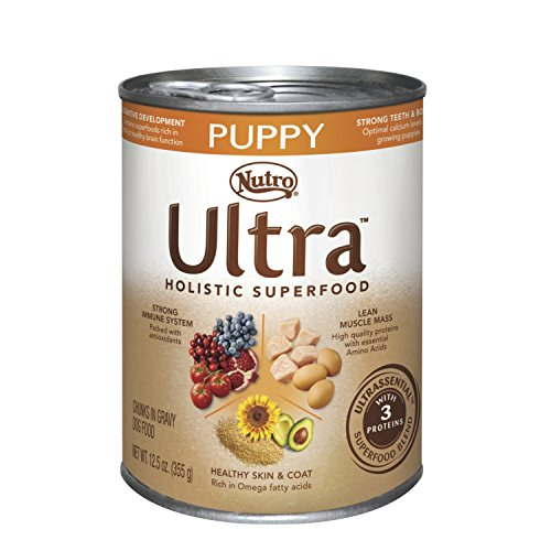 Nutro Ultra Holistic Superfood Wet Dog Food