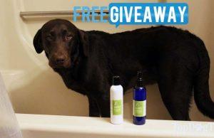 Eco Dog Care Starter Kit Giveaway