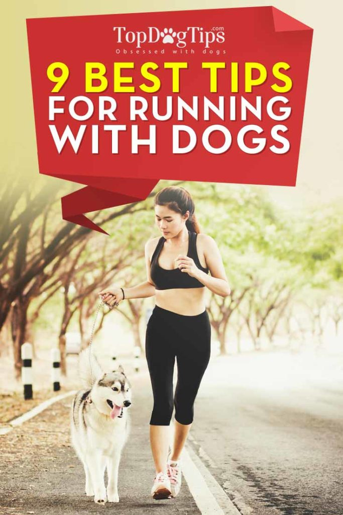 The 9 Tips for Running with Dogs