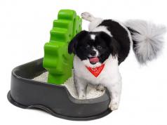 Best Wet Dog Food For Pugs