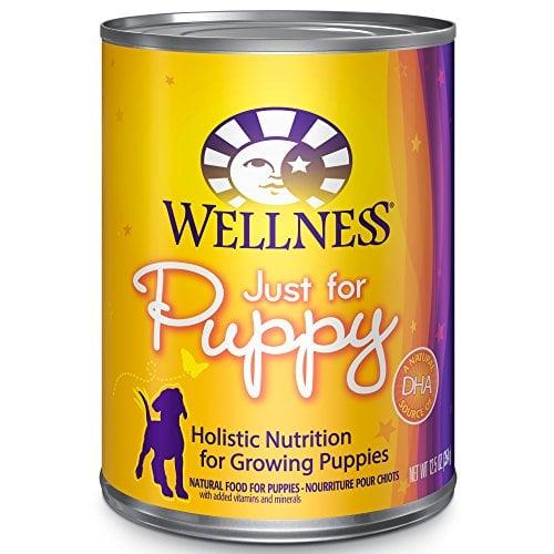 Wellness Wet Cat Food Diarrhea