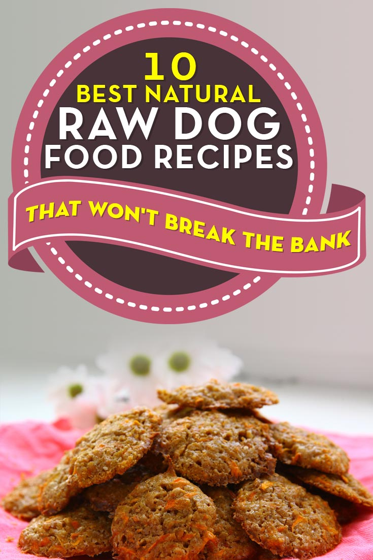 10 best natural homemade raw dog food recipes photos and videos best natural homemade raw dog food recipes for dogs forumfinder Gallery
