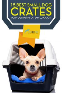 Best Small Dog Crate for Small Dogs and Puppies