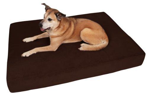 Big Barker dog bed review - best dog beds for large dogs?