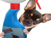 Best Dog Repellent Spray