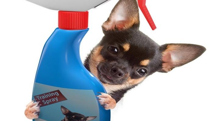 Perfect pet behavior corrector