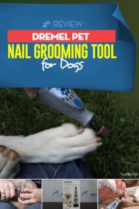Review of Dremel Pet Nail Grooming Tool For Dogs