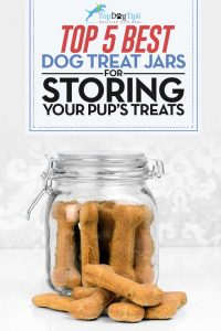 Top Best Dog Treat Jars for Storing
