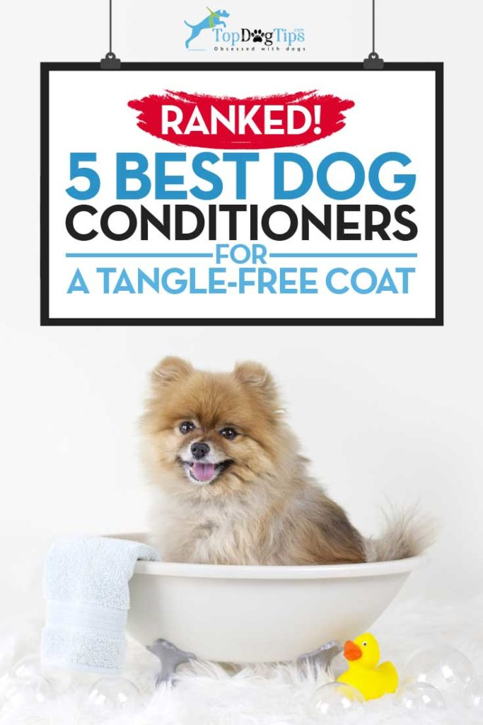 5 Top Rated Best Dog Conditioner Brands