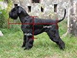 Measuring a dog for pet casket coffin