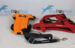 Best Seat Belt for Dogs Comparison