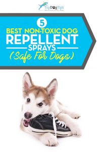 Top Non-Toxic Best Dog Repellent Sprays